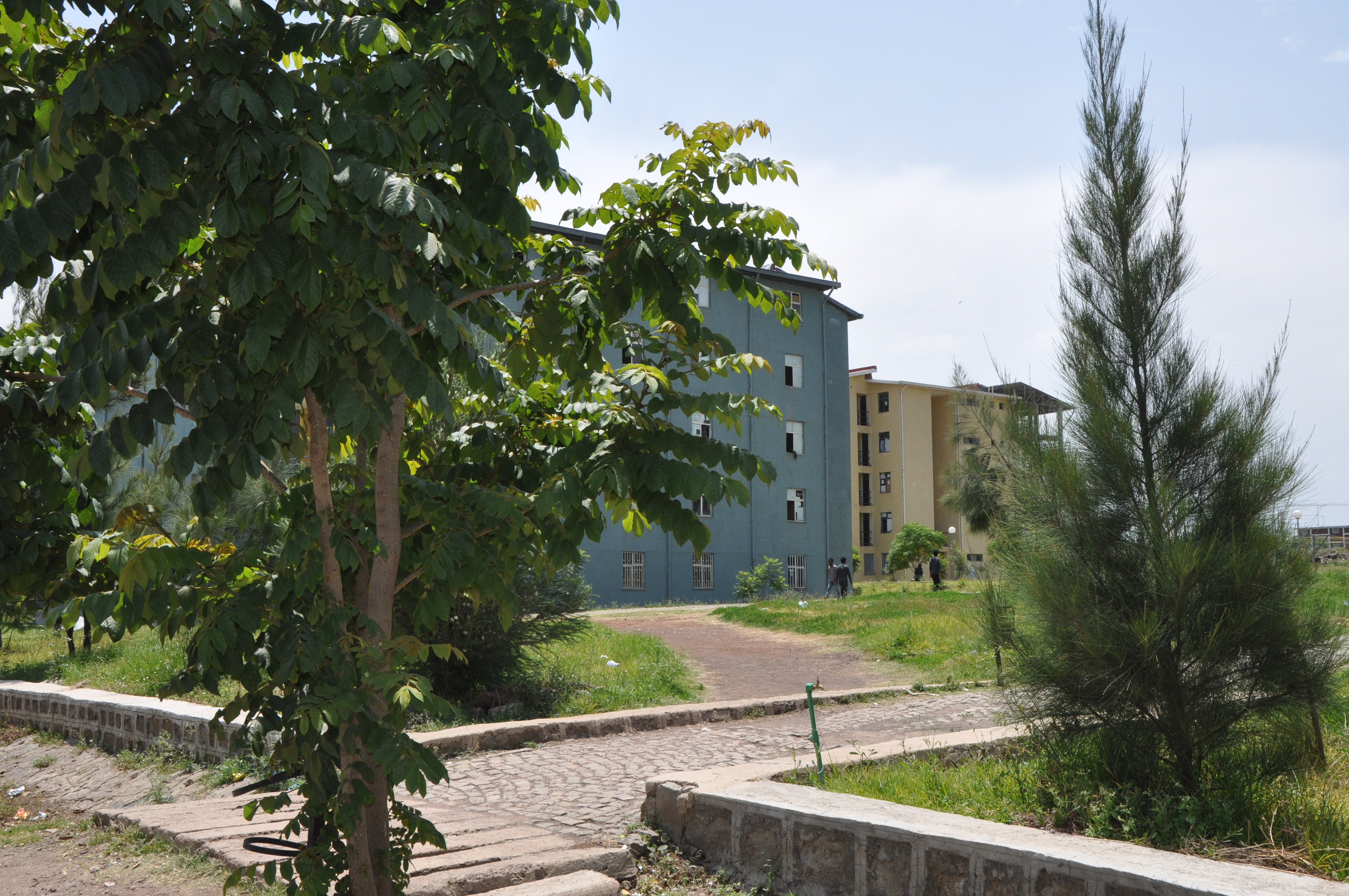 Programs – Addis Ababa Science and Technology University