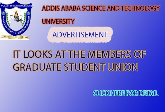 It looks at the members of  graduate student union